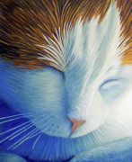 Feline Painting Posters - Dream Within A Dream Poster by Brian  Commerford