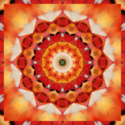 Spiritual. Geometric Prints - Dreaming Print by Bell And Todd