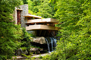 Frank Lloyd Wright Framed Prints - Dreaming of Fallingwater Framed Print by Rachel Cohen