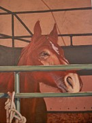 Quarter Horses Originals - Dreaming of Running by Bonnie Behan