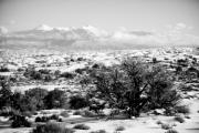 Southern Utah Framed Prints - Dreaming of Utah I - Monochrome Framed Print by Irene Abdou
