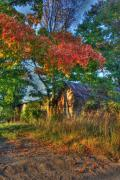 Autumn In The Country Metal Prints - Dreams Abandon Metal Print by Robert Pearson