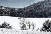 Saija  Lehtonen - Dreams of Snow