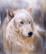 White Wolf Posters - Dreamscape - Wolf II Poster by Sandi Baker