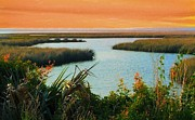 Florida Marsh Framed Prints - Dreamsicle Sunset Framed Print by Julie Dant