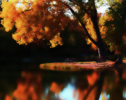 Fall Color Print Framed Prints - Dreamy Afternoon Framed Print by Terril Heilman
