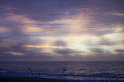 Heavenly Sunrise Posters - Dreamy Blue Atlantic Sunrise Poster by Teresa Mucha