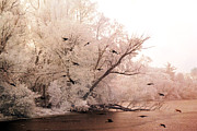 Surreal Fantasy Nature Scene With Ravens Prints - Dreamy Ethereal Infrared Lake With Ravens Birds Print by Kathy Fornal