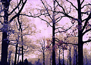 Surreal Dreamy Nature Photos Posters - Dreamy Impressionistic Romantic Nature Trees Poster by Kathy Fornal
