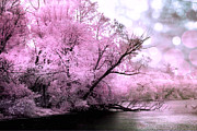 Sky Prints Prints - Dreamy Pink Lake Nature Tree Scene Bokeh  Print by Kathy Fornal