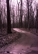 Surreal Landscape Photo Metal Prints - Dreamy Surreal Fantasy Woodlands Nature Path Metal Print by Kathy Fornal