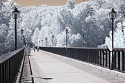 Infrared Nature Art Prints Photos - Dreamy Surreal Infrared Bridge Walkway Scene by Kathy Fornal