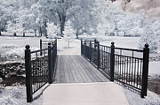 Infrared Art Prints Photos - Dreamy Surreal South Carolina Infrared Gate Scene by Kathy Fornal
