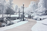 Infrared Nature Art Prints Photos - Dreamy Surreal South Carolina Infrared Landscape by Kathy Fornal