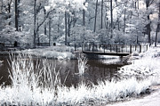 Blue Grey Infrared Art Prints Posters - Dreamy Surreal South Carolina Pond Landscape Poster by Kathy Fornal