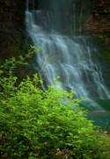 Spring Landscape Art - Dreamy Waterfalls by Iris Greenwell
