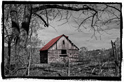 Red Roof Prints - Dressed In Red Print by Debra and Dave Vanderlaan
