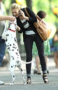 Dalmatian Dog Prints - Drew Barrymore On Location For Going Print by Everett
