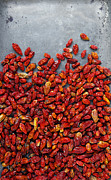 Fiery Prints - Dried Chili Peppers Print by Carlos Caetano