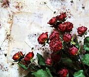Red Wallpaper Posters - Dried Flowers Against Wallpaper Poster by Marsha Heiken