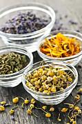 Dried Medicinal Herbs Print by Elena Elisseeva