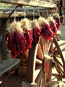 Dried Red Hot Peppers Print by Cindy Wright