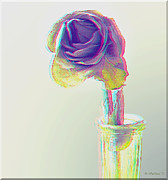 Stereoscopy Photos - Dried Rose - Use Red-Cyan 3D glasses by Brian Wallace