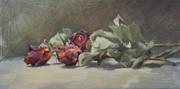 Blurry Painting Prints - Dried Roses Print by Roger Clark
