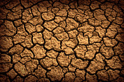 Drain Art - Dried Terrain by Carlos Caetano