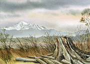 Mt Baker Prints - Driftwood Dawn Print by James Williamson