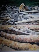 Driftwood Print by Joyce Reid
