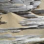 Taupe Photos - Driftwood by Michelle Calkins