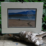 Frame Sculptures - Driftwood Picture Frame by Tracy Kelly