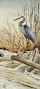 Heron Art - Driftwood Splendor by James Williamson