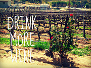 Winery Photography Posters - Drink More Wine  Poster by Tara Yarte