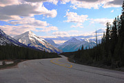 Scenic Drive Originals - Drive thru Canadian Rokies by Michael Reynolds