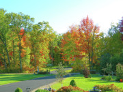 Fall Scenes Posters - Driveway Amongst Fall Color Poster by Randy Rosenberger