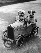 Pet And Owner Prints - Driving Dog Print by Norman Smith