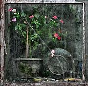 Old Window Posters - Drizzled Window Poster by Joe Bonita