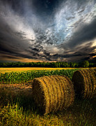 Horizons Framed Prints - Drought Framed Print by Phil Koch