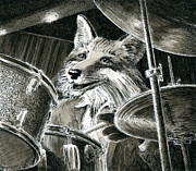 Drummer Drawings Metal Prints - Drums Fox Metal Print by Scott Alberts