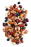 Isolated Prints - Dry beans Print by Elena Elisseeva