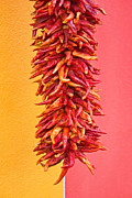 Skiphunt Photos - Dry Chilies  by Skip Hunt