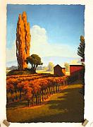 California Vineyard Paintings - Dry Creek Napa Valley by David Langenhorne