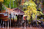 Big Cypress Bayou Photos - Dry Dock by Lana Trussell