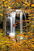 Water Photographs Prints - Dry Falls in Autumn Print by Rob Travis