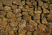 Dry Stone Wall Art - Dry Stone Wall by Chris Knapton