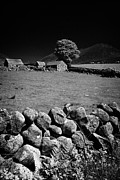 Outbuildings Posters - Dry Stone Wall Farmland In The Mourne Mountains County Down Northern Ireland Poster by Joe Fox