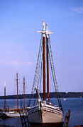 Tall Ship Prints - Drydock At Rockland Print by Skip Willits