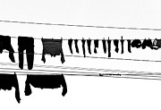 Black And White Photography Metal Prints - Drying Laundry On Two Clothesline Metal Print by Massimo Strazzeri Photography